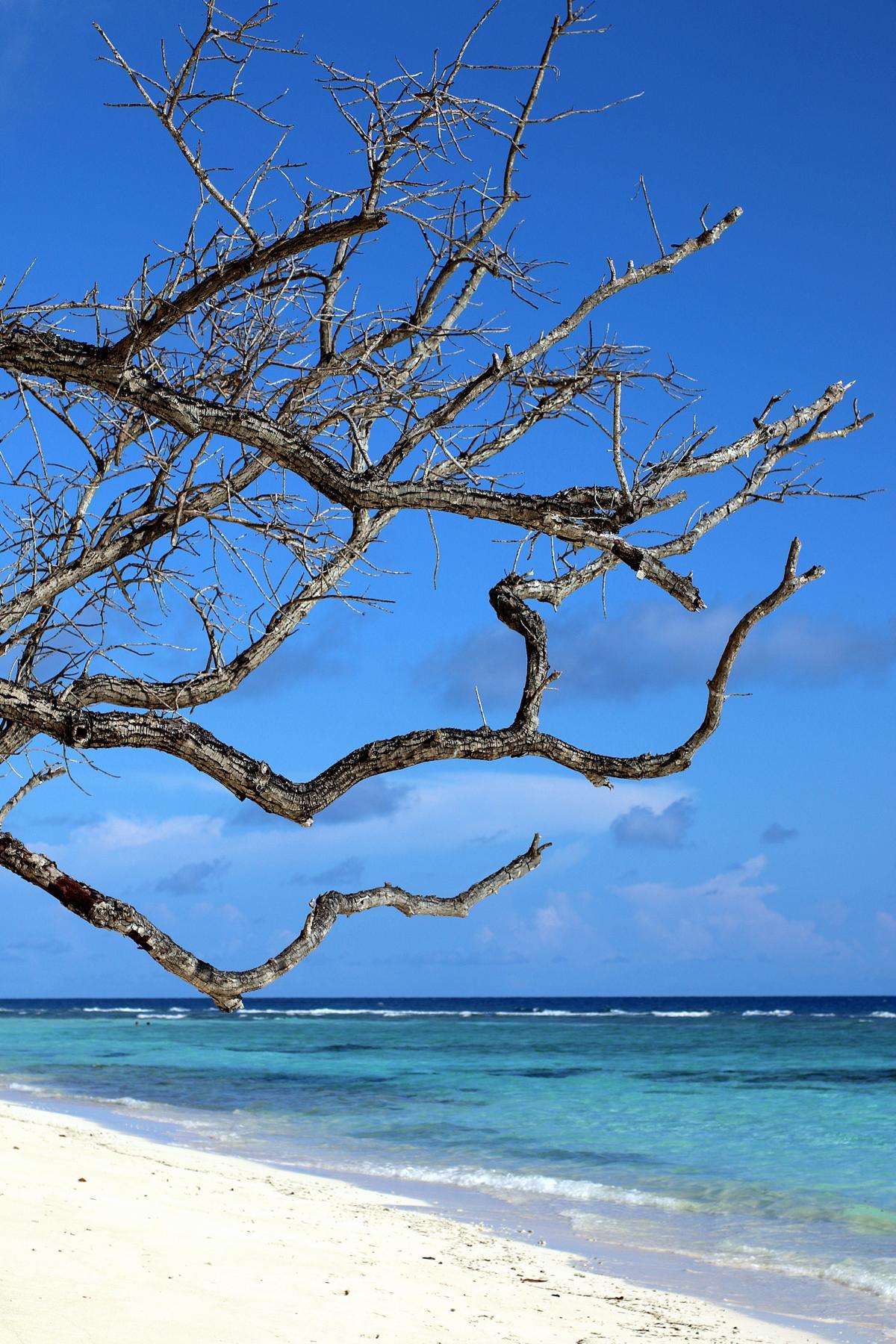 Reif für die Insel Silhouette…