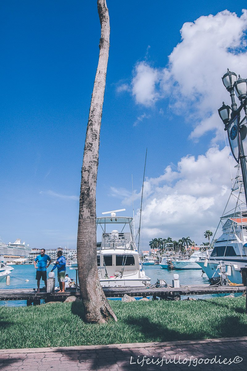 Aruba - Karibik