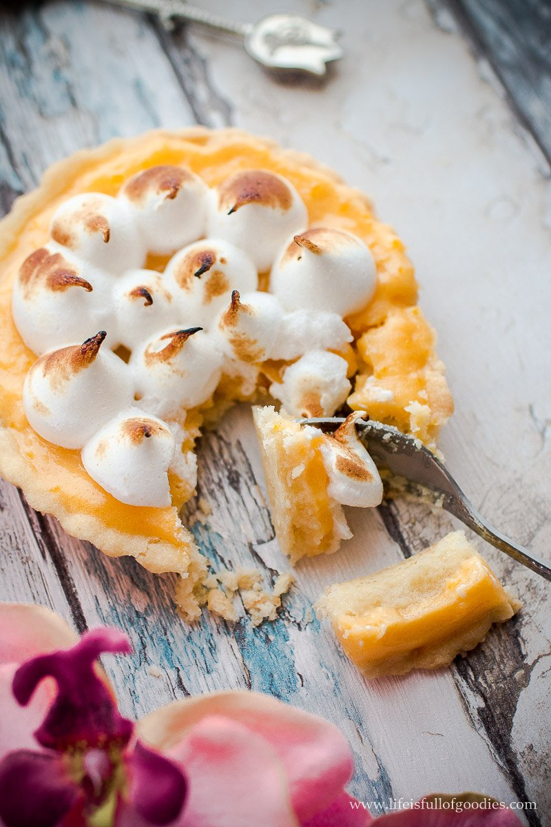 Zitronen Tartelettes mit Baiser und unser Foto Workshop
