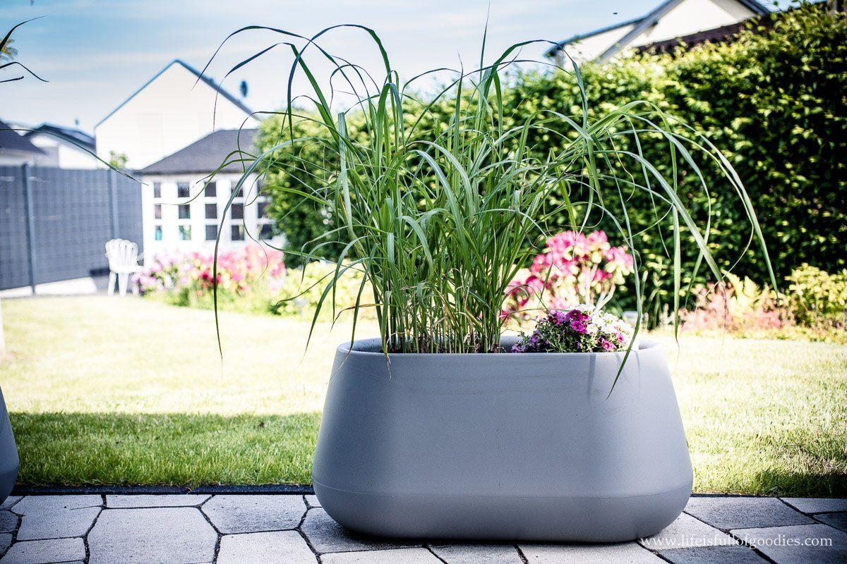 Neue Blumenkübel für drinnen und draußen