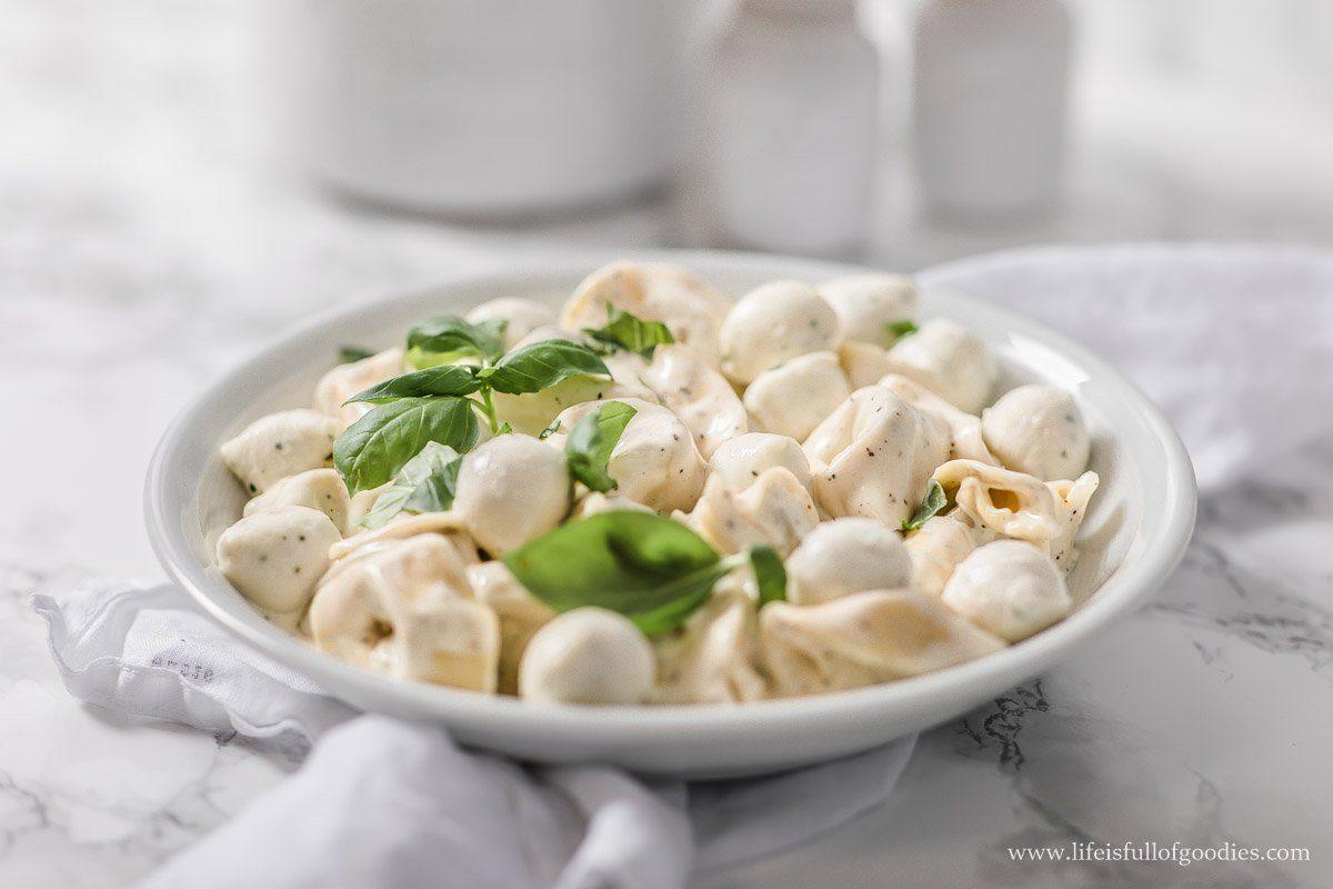 Tortellini mit Frischkäse-Sahnesauce und Mozzarella